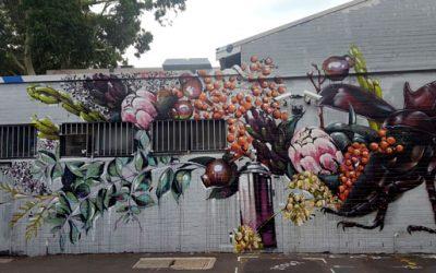 The Hive Bar – King St Crawl Mural